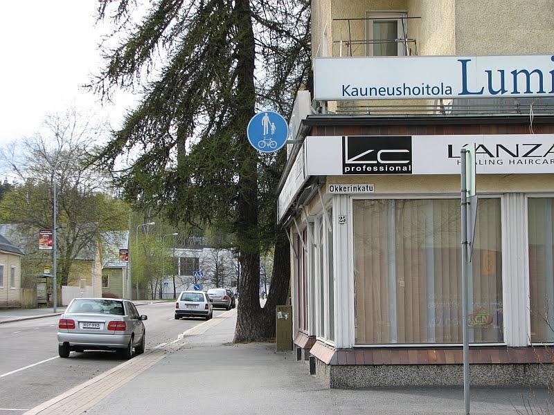 Jyväskylän Voionmaankadulla puu kaventaa entisestään kapeaa yhdistettyä jalkakäytävää ja pyörätietä.